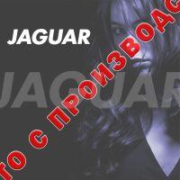 JAGUAR артикул: 880391-D1 Дисплей брашингов T-SERIE